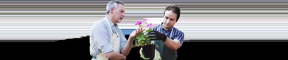 técnico jardinería