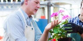 Experto/a en Floristería, Floricultura y Ornamentación