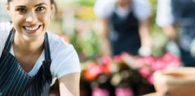 Técnico en Jardinería. Diseño y Creación de Jardines