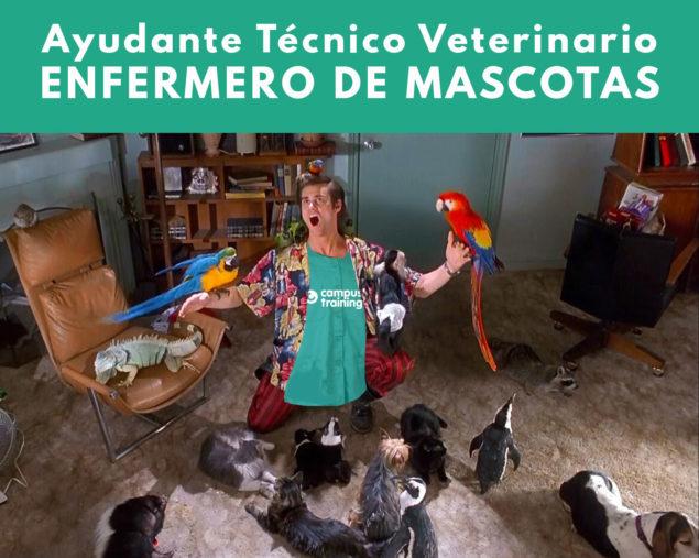 Salario de un Ayudante técnico veterinario
