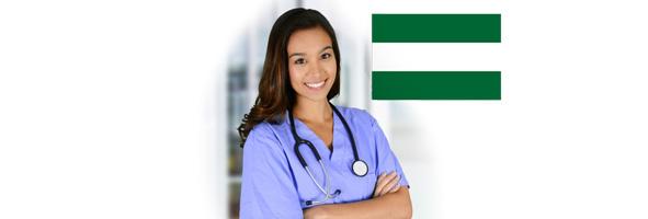 trabajador social servicio salud andalucía