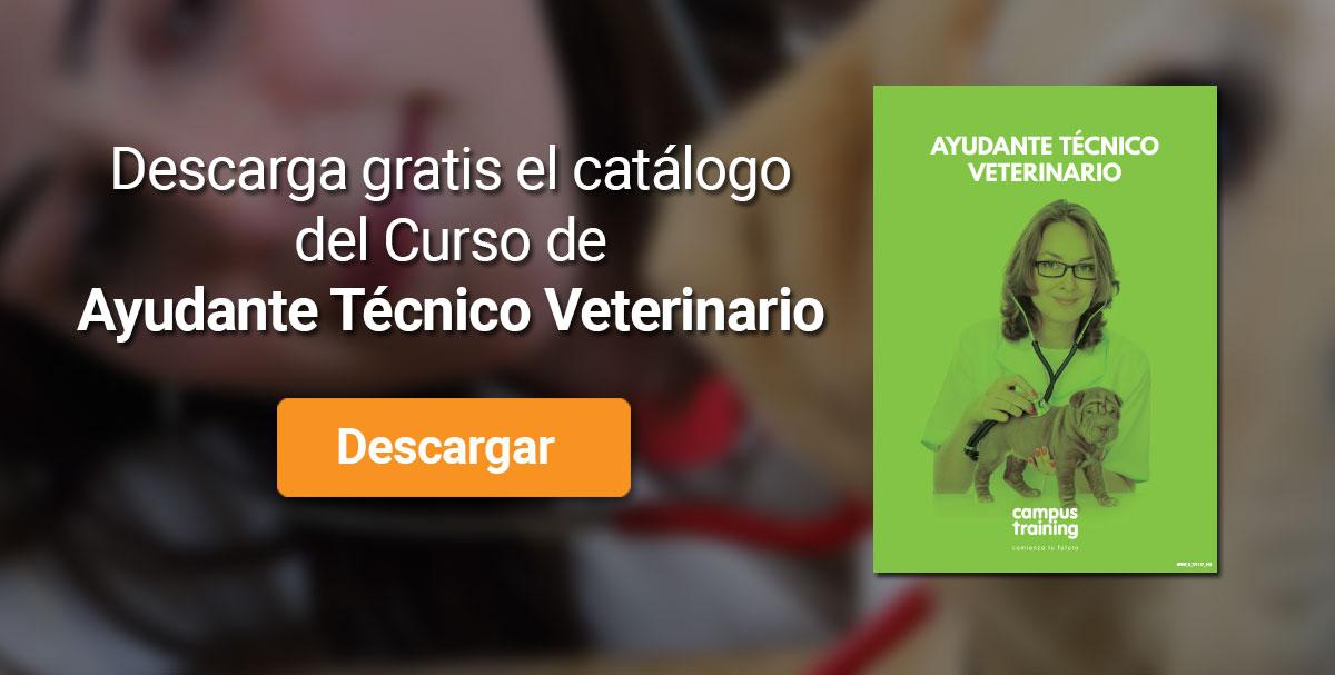 Descarga el catálogo para el curso: Curso de Ayudante Técnico Veterinario