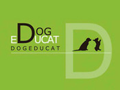 Dog educat