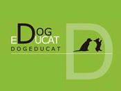 Dog educat