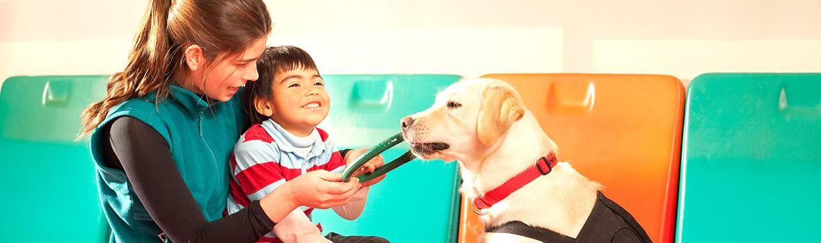 Curso de Terapia Asistida con Animales