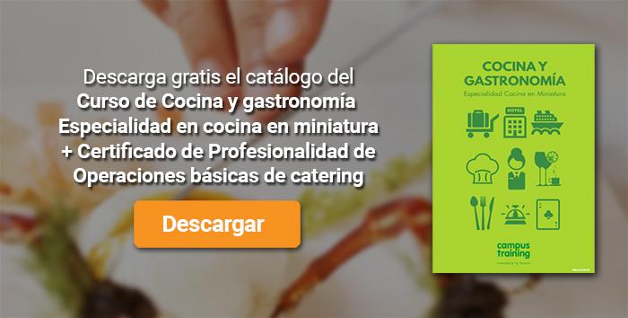 Descarga el catálogo para el curso: Curso de Cocina y gastronomía. Especialidad en cocina en miniatura + Certificado de Profesionalidad de Operaciones básicas de catering
