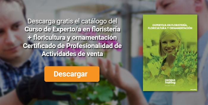 Descarga el catálogo para el curso: Curso de Experto/a en floristería, floricultura y ornamentación + Certificado de Profesionalidad de Actividades de venta