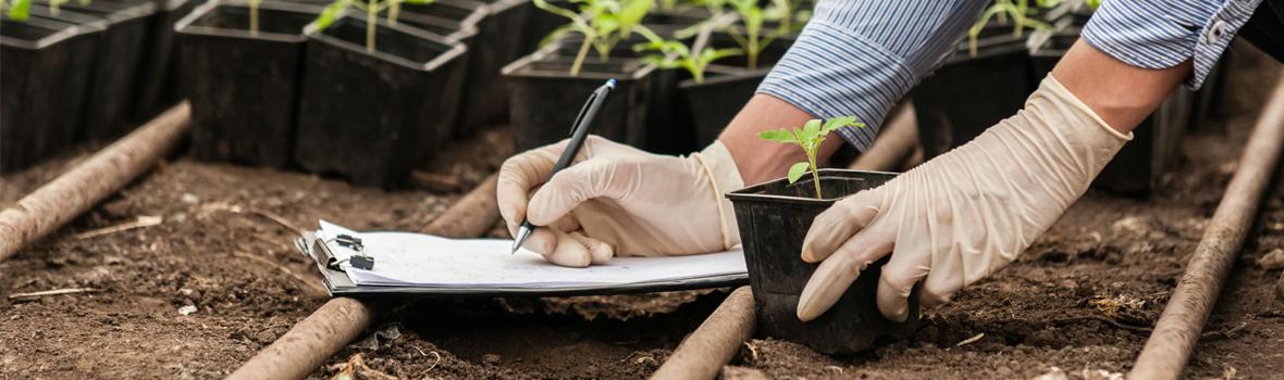 Pruebas Libres de Grado Medio para Técnico en Aprovechamiento y Conservación del Medio Natural