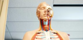 Estudiar visitador médico: ¿dónde estudiar?