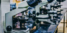 Anatomía patológica y citodiagnóstico. Asignaturas