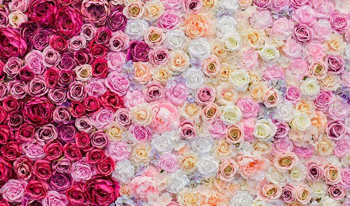 curso de floristería y floricultura