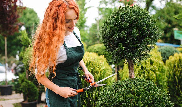 curso de jardinería - jardín ideal