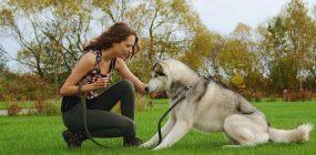 Cómo ser adiestrador de perros. Las claves para trabajar en tu pasión