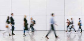 Orientador laboral a distancia: la formación necesaria
