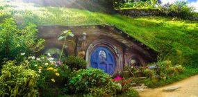 Estudiar jardinería: formarte para ser jardinero
