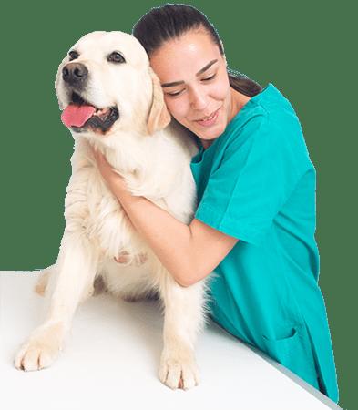 curso-veterinaria