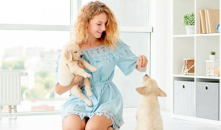 Cómo educar a un cachorro – Adiestramiento Canino