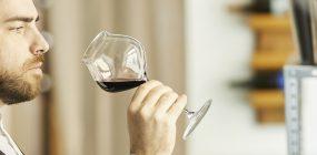 Curso de sumiller online: conviértete en un experto en vinos