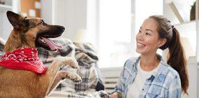 Curso Adiestramiento Canino online: conviértete en adiestrador