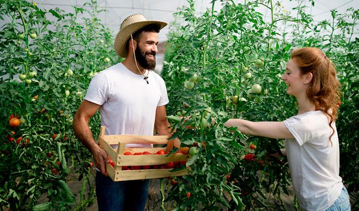 Cómo hacerse agricultor ecológico - curso
