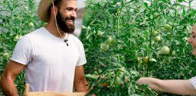 ¿Cómo hacerse agricultor ecológico? Empleo verde en auge
