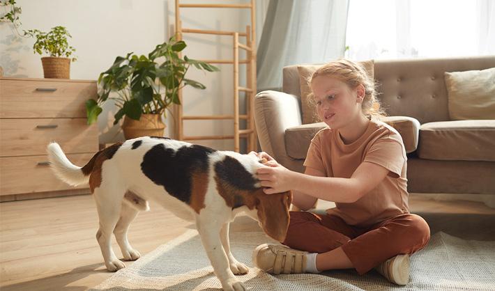 Educación Asistida con Animales - curso terapia