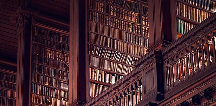 Auxiliar de biblioteca|