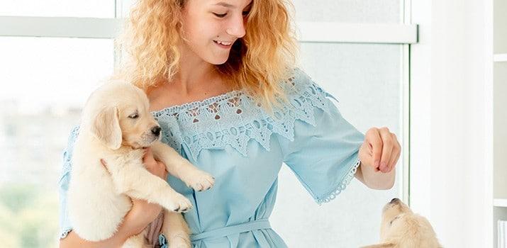 Cómo educar a un cachorro – Adiestramiento Canino|Cómo educar a un cachorro – Adiestramiento Canino