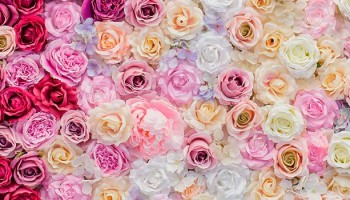 Conviértete en experto del arte floral con el curso de floristería