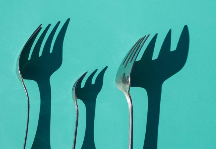 donde estudiar nutricion y dietetica, ¿Dónde estudiar nutrición y dietética? Toda tu oferta formativa