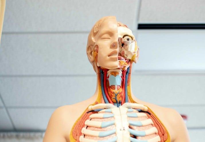 estudiar visitador medico, Estudiar visitador médico: ¿dónde estudiar?