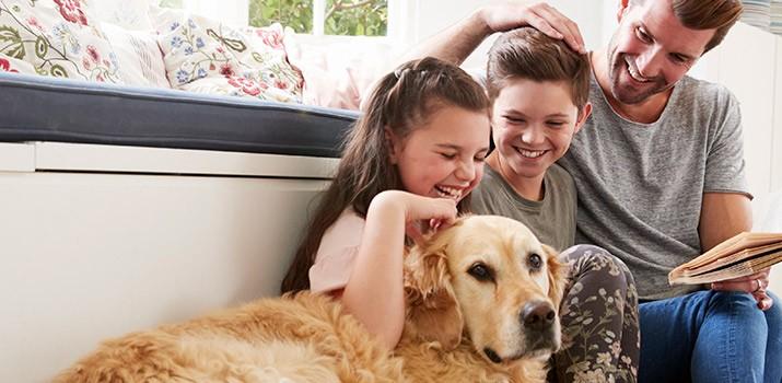 Mejores libros de Adiestramiento Canino curso|Mejores libros de Adiestramiento Canino curso