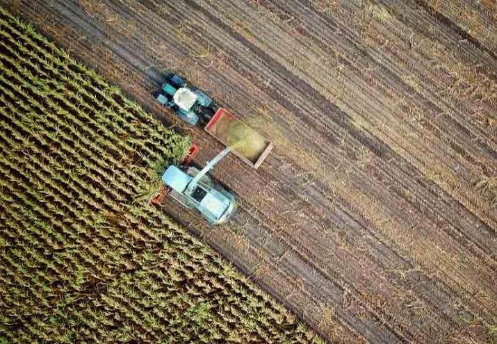 requisitos para ser joven agricultor, Requisitos para ser joven agricultor