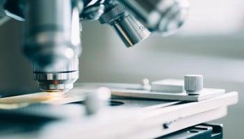 Sueldo Técnico de Laboratorio: lo que gana un Técnico de Laboratorio Clínico y Biomédico
