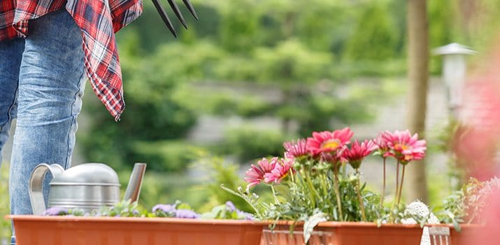 El perfil profesional de un jardinero – Curso de Jardinería|¿Sabes cómo es el perfil para ser jardinero profesional?