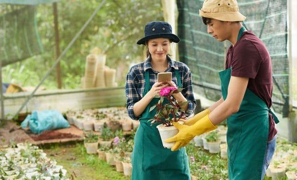 ¿Qué esperar de un curso de Floricultura a distancia? ¡Te lo contamos!