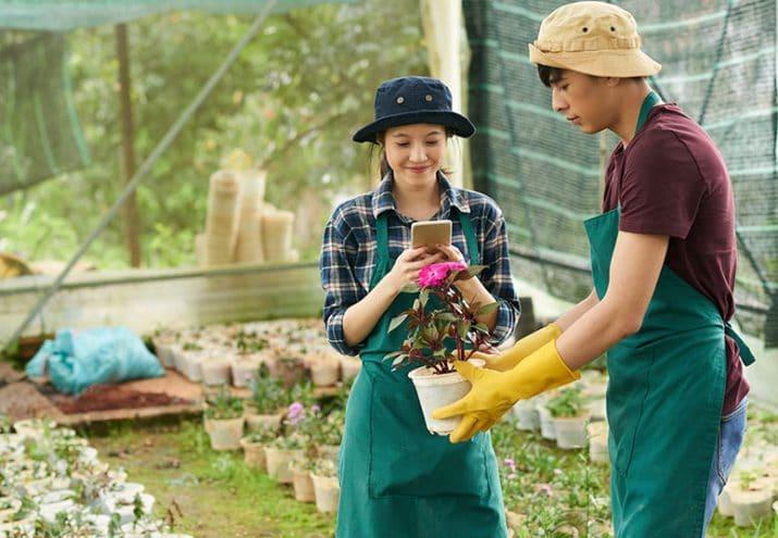 sueldo floricultura